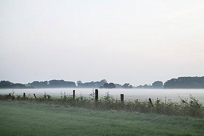 Auenlandschaft, Niedersachsen - p403m937582 von Helge Sauber