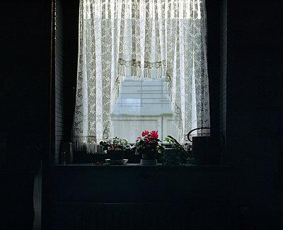 Fenster zur Autobahnmauer - p1317m1149817 von teryoshi