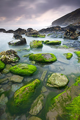 Algae covered rocks at Tregardock Beach, North Cornwall, England, United Kingdom, Europe - p8713062 by Adam Burton