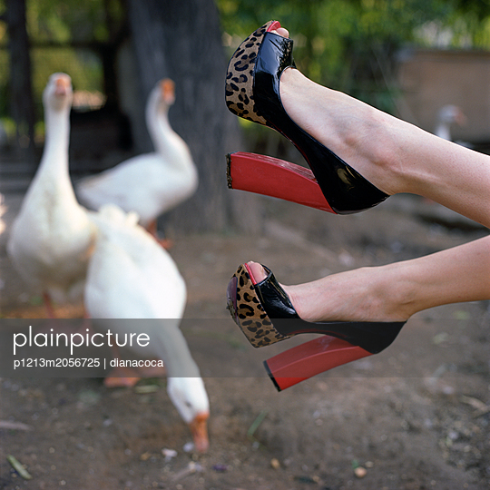With highheels on the farm - p1213m2056725 by dianacoca