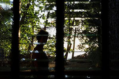 Blick durch ein Fenster in den schattigen Garten - p590m1564506 von Philippe Dureuil