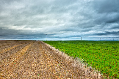 Spain, Province of Zamora, fields under cloudy sky - p300m1205130 by David Santiago Garcia