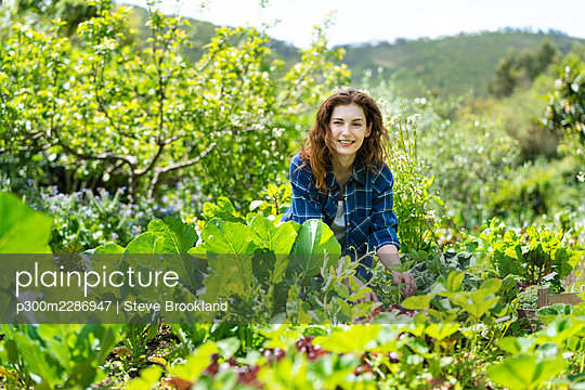 Young woman picking vegetables in organic permaculture garden in Portugal - p300m2286947 von Steve Brookland