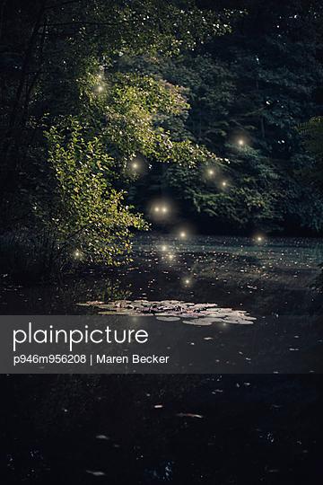 Glow worm - p946m956208 by Maren Becker