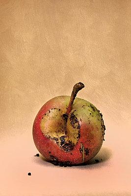 Verfaulter Apfel - p402m721178 von Ramesh Amruth