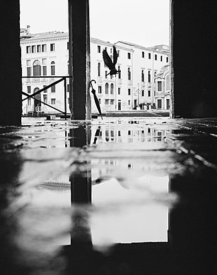 Taube im Anflug bei Regen, Canal Grande, Cannaregio - p1493m1584570 von Alexander Mertsch