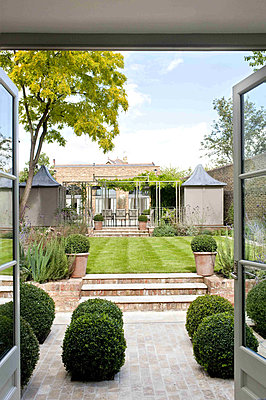 Garden exterior of London townhouse from conservatory extension - p349m790967 by Polly Eltes