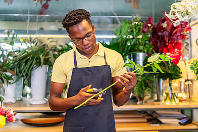 young african entrepreneur making a bouquet of flowers - p1166m2279455 by Cavan Images