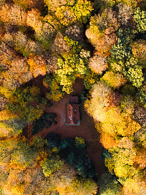 Germany, Aerial view, House in the forest in autumn  - p1549m2222986 by Sam Green