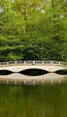 Bridge in a park - p382m952555 by Anna Matzen