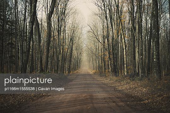 p1166m1555538 von Cavan Images