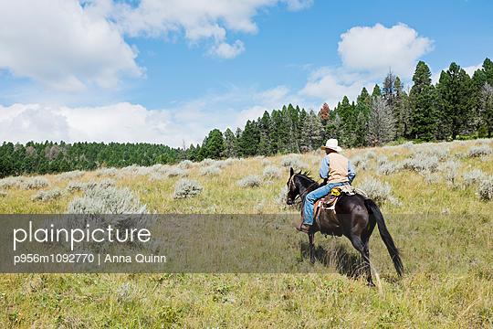 Modern cowboy on horse - p956m1092770 by Anna Quinn