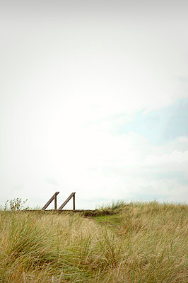 Ladder in the dunes - p382m1540197 by Anna Matzen