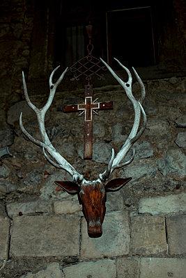 Deer head - p432m702593 by mia takahara