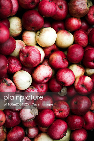 Harvested red apples at a market. - p1166m2094525 by Cavan Images