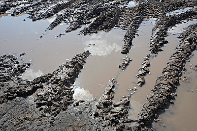 Range of construction vehicle tracks across a puddle on construction site - p301m744215f by Vladimir Godnik