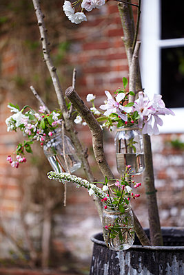 Outdoor spring floral decorations of glass jam jars filled with blossom in preparation for an Easter party. - p349m2167889 by Sussie Bell