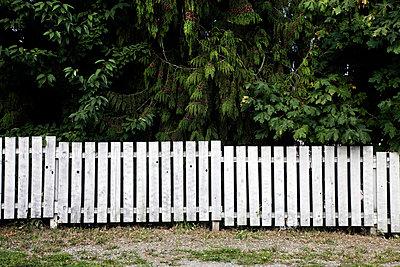 In a row - p8360095 by Benjamin Rondel