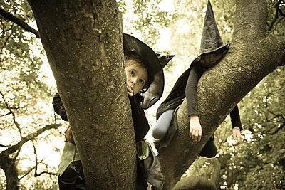 Zwei Kinder als Hexen verkleidet auf einem Baum - p1219m1194692 von Alina Gross