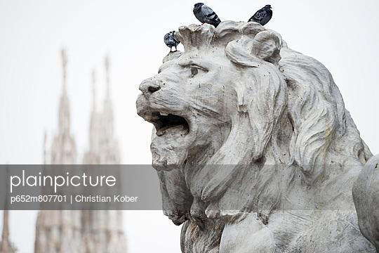 p652m807701 von Christian Kober