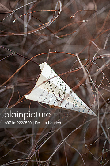 Paper airplane - p971m2222520 by Reilika Landen