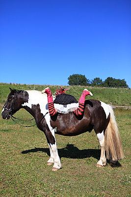 Ungeschickt aufs Pferd steigen - p045m1048089 von Jasmin Sander