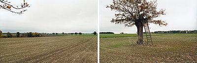 Landschaft - p1205m1020938 von Annet van der Voort