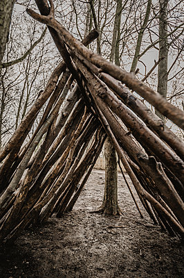 Great Britain, Ipswich, Wooden shelter in a woodland - p1628m2244871 by Lorraine Fitch