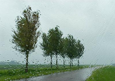 Regen - p1132m1016979 von Mischa Keijser