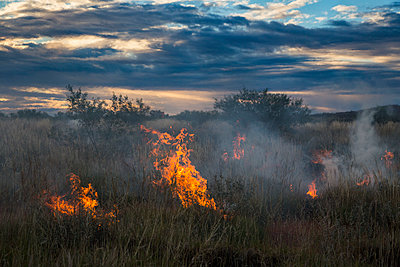 Fire on grassy field against cloudy sky during sunset, Newman, Western Australia, Australia - p301m1180780 by Tobias Titz