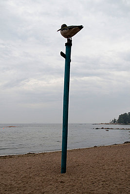 Beach - p322m715843 by Kimmo von Lüders
