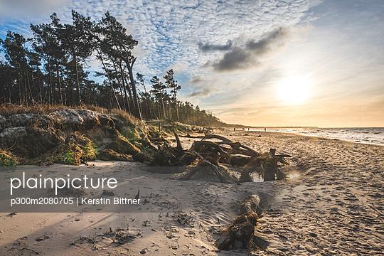 Germany, Mecklenburg-Western Pomerania, Darss, Ahrenshoop, West beach at sunset - p300m2080705 by Kerstin Bittner