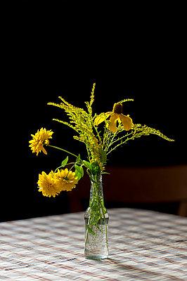 Gelber Blumenstrauß - p949m955524 von Frauke Schumann