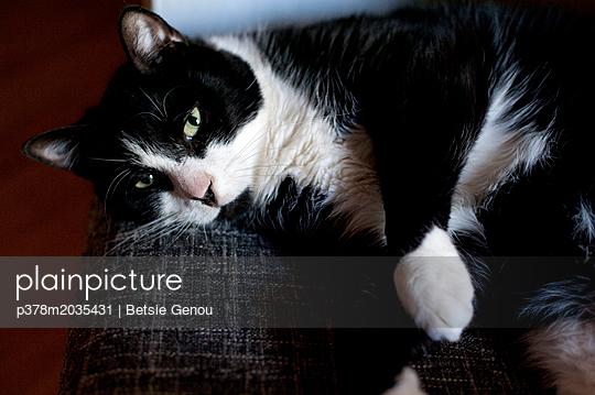 p378m2035431 von Betsie Genou