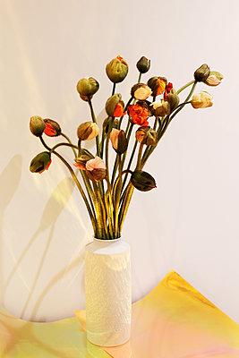 Mohn in einer Vase - p1174m2244743 von lisameinen