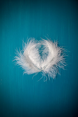 Two Delicate Feathers Forming Heart - p1248m1573438 by miguel sobreira