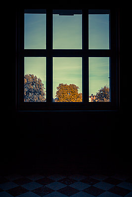 Autumn view through  a window  - p1062m1172154 by Viviana Falcomer