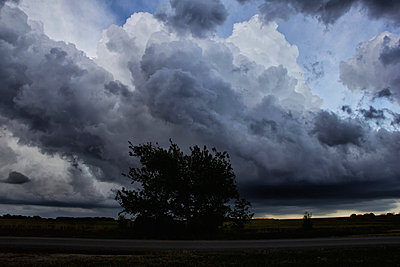 p429m935317 von Jason Persoff Stormdoctor