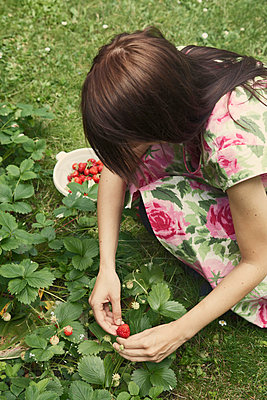 Young Woman in flowery summer dress picking strawberries in the garden - p8476160 by Johan Strindberg