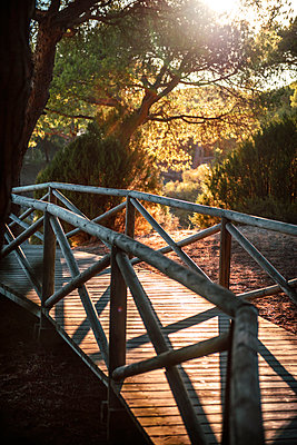 Spain, Andalusia, Huelva, wooden boardwalk through nature park - p300m998946f by klublu