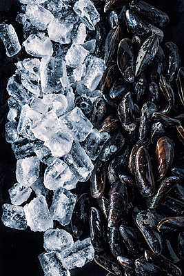 Cooled mussels - p947m1492703 by Cristopher Civitillo