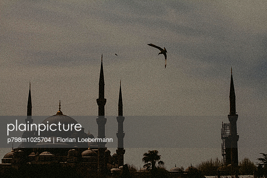 View on Sultan Ahmed Camii (blue Mosque) from Hagia Sophia - p798m1025704 by Florian Löbermann