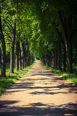 Parkway - p795m912271 by Janklein