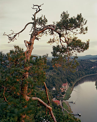 View from the rock 'Bastei' onto Elbe River - p1012m929221 by Frank Krems