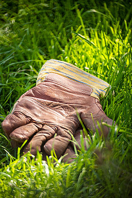 Working gloves in grass - p1418m2124800 by Jan Håkan Dahlström