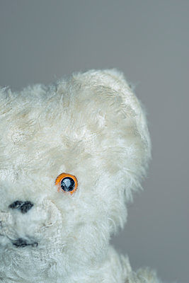 Vintage, worn and well-loved teddy bear. - p1433m1589981 by Wolf Kettler