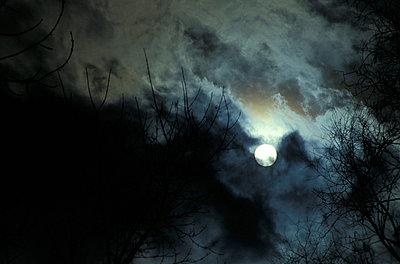 Full moon; Bavaria; Germany - p3000022f by Oronzo Montedoro