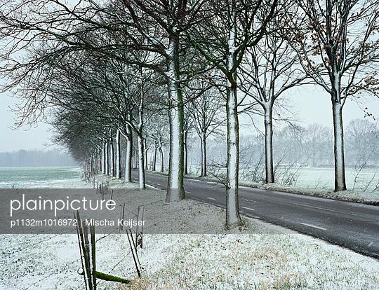 Winter - p1132m1016972 von Mischa Keijser