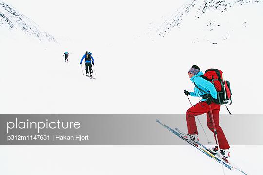 p312m1147631 von Hakan Hjort