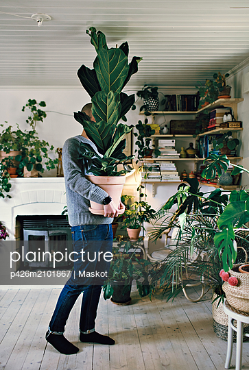 Full length of man carrying potted plant in room at home - p426m2101867 by Maskot